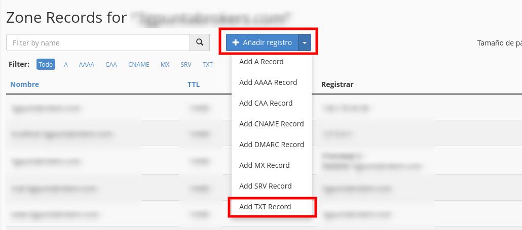 configurar registro TXT cpanel