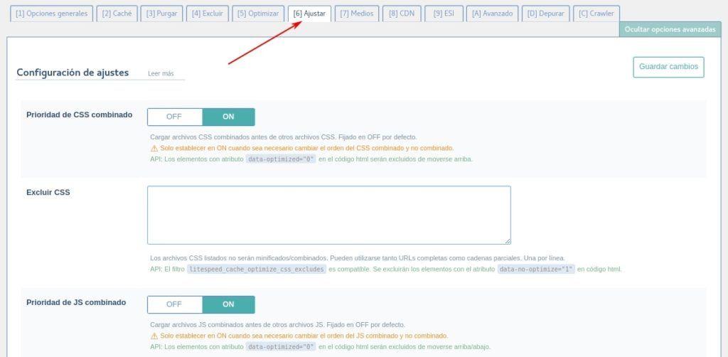 Prioridad de CSS - LSCache