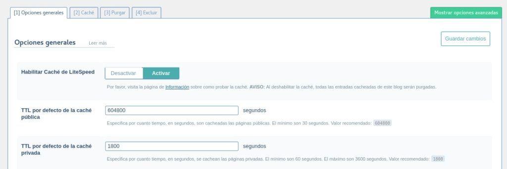 Opciones generales de LSCache WordPress