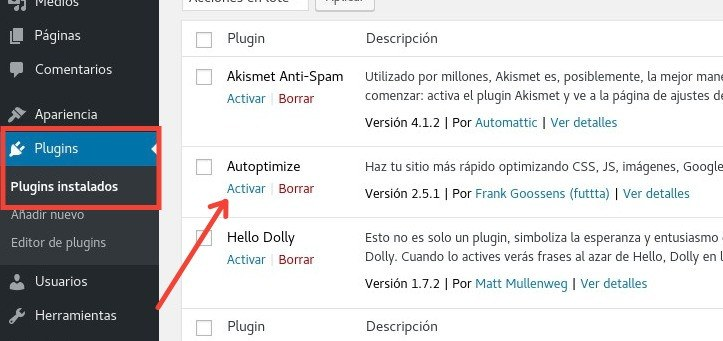 Activar Autoptimize WordPress